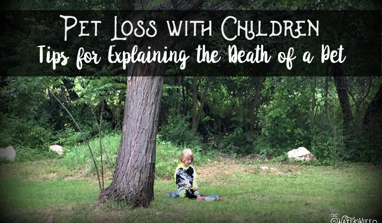 Pet Loss with Children: Tips for Explaining the Death of a Pet