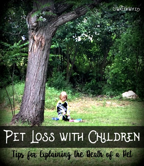 A must read for all parents for help explaining the death of a pet and supporting your children with the loss of your family pet.