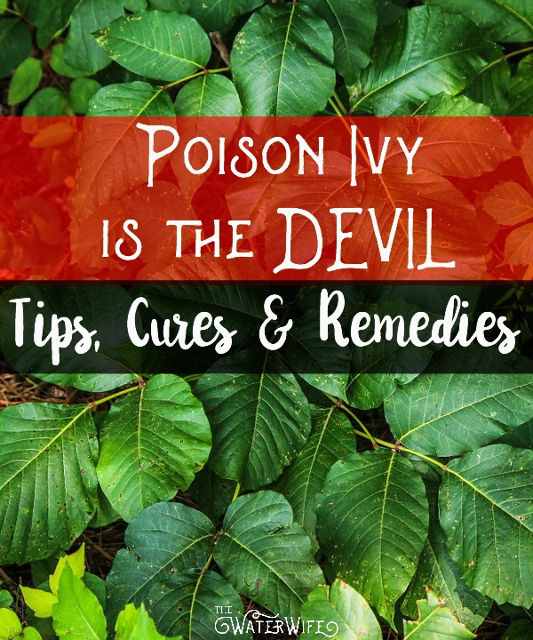 Funny poison ivy story plus honest tips for what cures poison ivy, poison oak or sumac , what home remedies work plus great tips! Get better today!