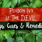 Funny poison ivy story and honest tips, tricks, remedies and cures for poison ivy, poison oak and sumac. A mist read for relief right now!