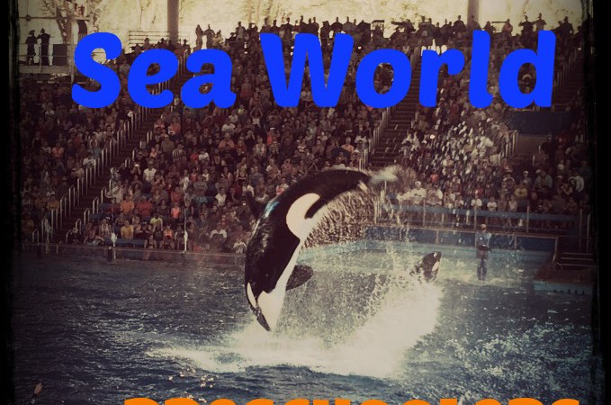 Surviving Sea World with Preschoolers