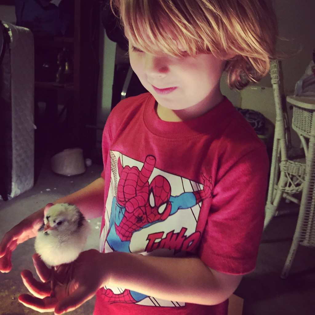 Backyard preschool chicken farmers are the cutest!! Beware, you will want chicks after reading this.