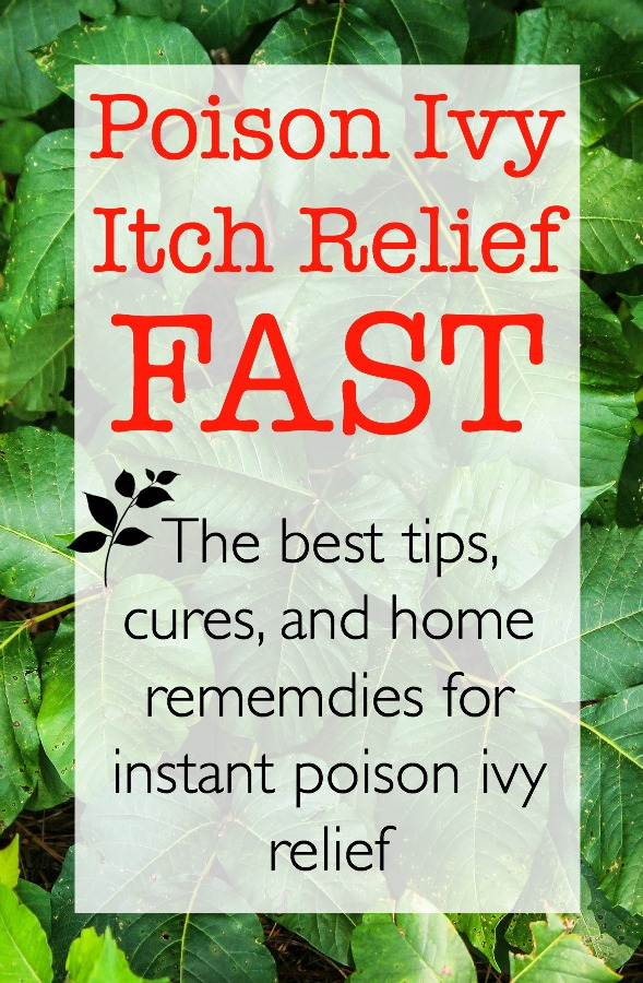 This is the only poison ivy information you will ever need, find out how to recognize, prevent, treat, and cure poison ivy. Get the poison ivy itch relief you need today.